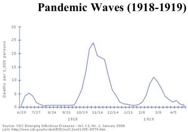 Covid 19 Pandemic—Wave 2
