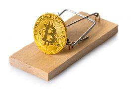 Bitcoin Mania, Tulip Mania?